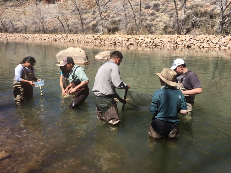 Ranger Naranjo helps collect benthic macroinvertebrates.