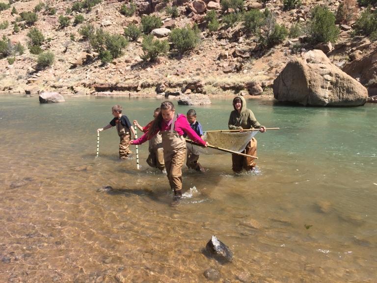 Carrying a kick net to shore.