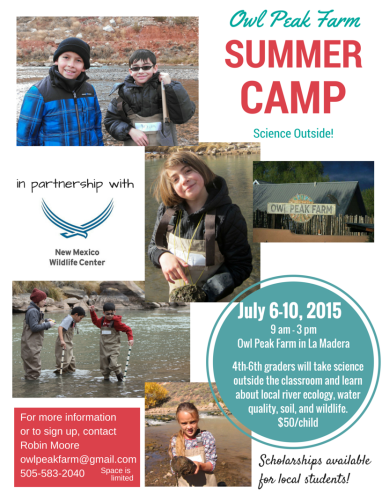 Owl Peak Farm Summer Camp