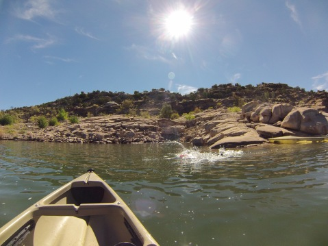 Cooling off in Abiquiu Lake
