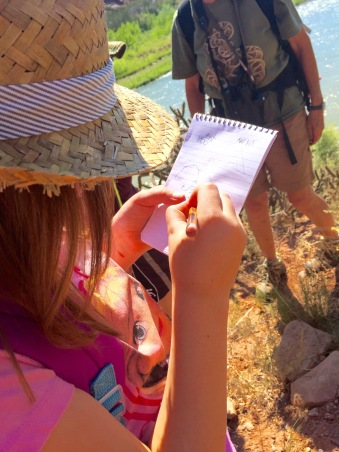Identifying and recording life forms along the Rio Chama.